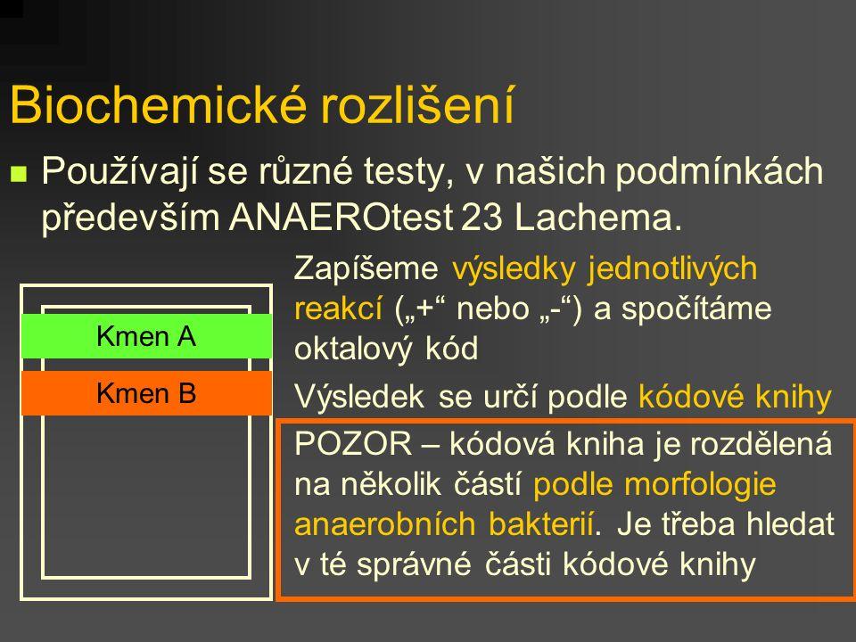 Biochemické rozlišení Používají se různé testy, v našich podmínkách především ANAEROtest 23 Lachema. Kmen A Kmen B Zapíšeme výsledky jednotlivých reak