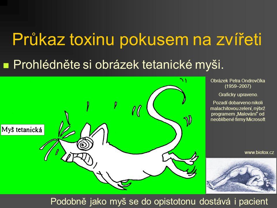 Průkaz toxinu pokusem na zvířeti Prohlédněte si obrázek tetanické myši. Podobně jako myš se do opistotonu dostává i pacient www.biotox.cz Obrázek Petr