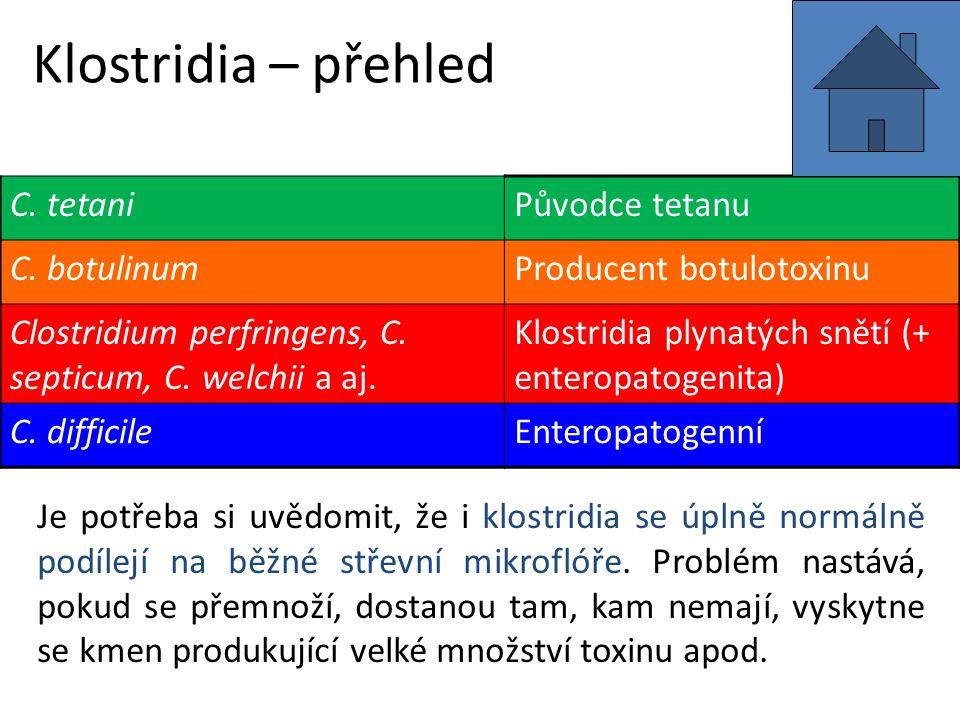 Klostridia – přehled C.tetaniPůvodce tetanu C.