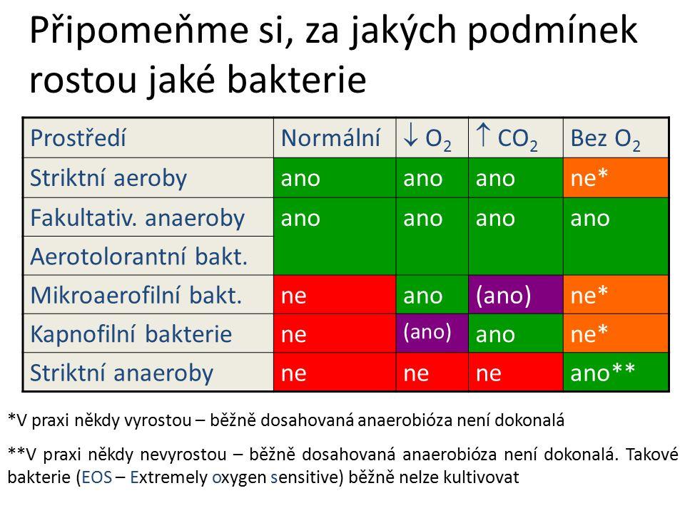 Připomeňme si, za jakých podmínek rostou jaké bakterie ProstředíNormální  O2 O2  CO 2 Bez O 2 Striktní aerobyano ne* Fakultativ.