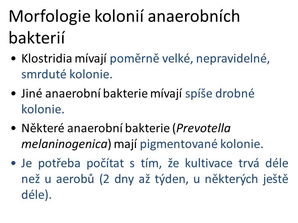 Morfologie kolonií anaerobních bakterií Klostridia mívají poměrně velké, nepravidelné, smrduté kolonie.