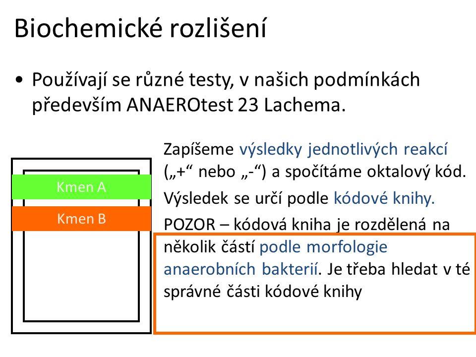 Biochemické rozlišení Používají se různé testy, v našich podmínkách především ANAEROtest 23 Lachema.
