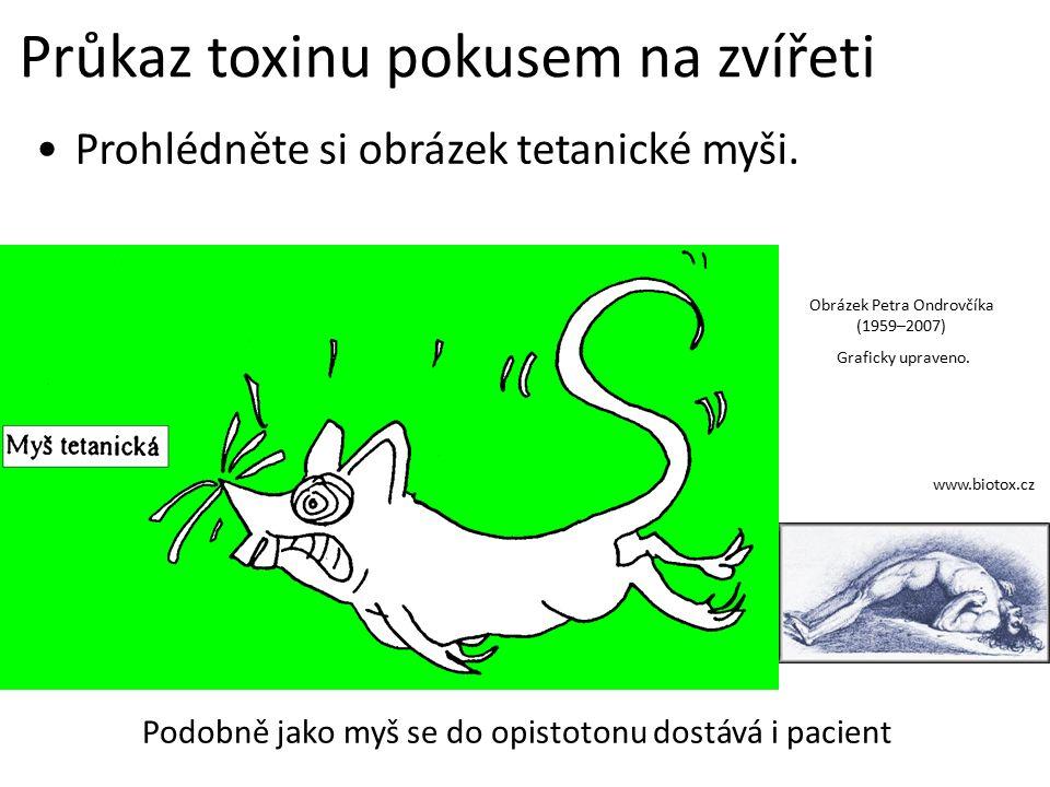 Průkaz toxinu pokusem na zvířeti Prohlédněte si obrázek tetanické myši.