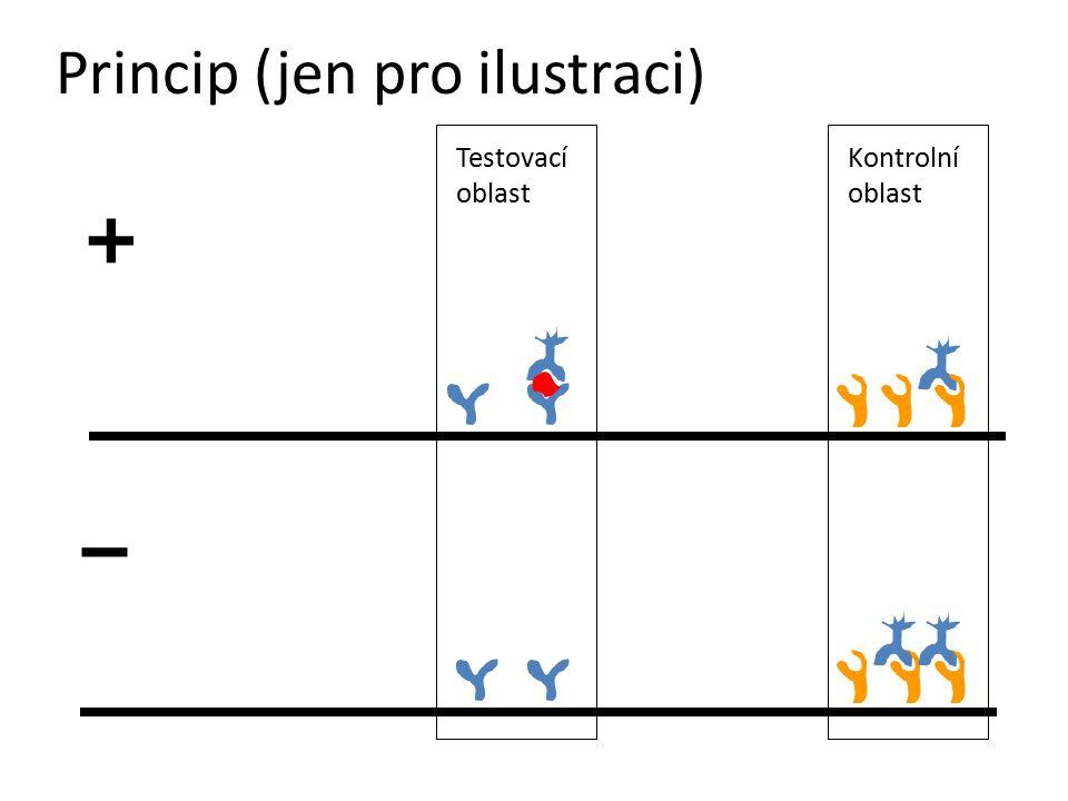 Princip (jen pro ilustraci) + – Testovací oblast Kontrolní oblast