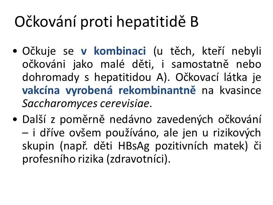 Očkování proti hepatitidě B Očkuje se v kombinaci (u těch, kteří nebyli očkováni jako malé děti, i samostatně nebo dohromady s hepatitidou A).