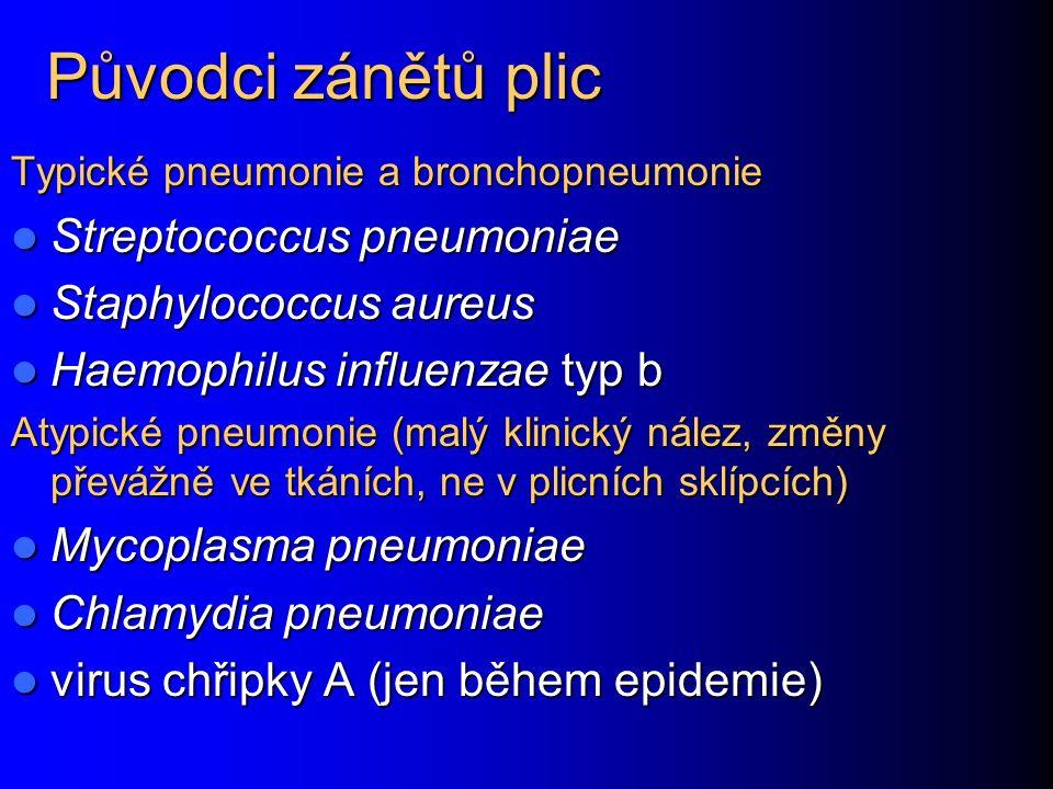 Původci zánětů plic Typické pneumonie a bronchopneumonie Streptococcus pneumoniae Streptococcus pneumoniae Staphylococcus aureus Staphylococcus aureus Haemophilus influenzae typ b Haemophilus influenzae typ b Atypické pneumonie (malý klinický nález, změny převážně ve tkáních, ne v plicních sklípcích) Mycoplasma pneumoniae Mycoplasma pneumoniae Chlamydia pneumoniae Chlamydia pneumoniae virus chřipky A (jen během epidemie) virus chřipky A (jen během epidemie)