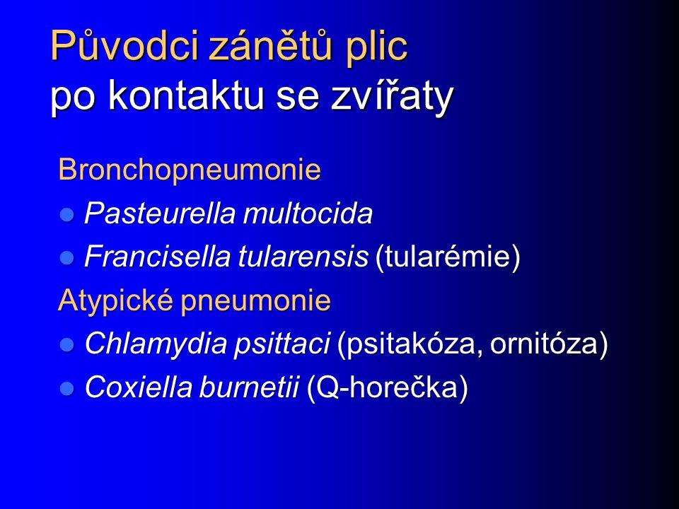 Původci zánětů plic po kontaktu se zvířaty Bronchopneumonie Pasteurella multocida Pasteurella multocida Francisella tularensis (tularémie) Francisella tularensis (tularémie) Atypické pneumonie Chlamydia psittaci (psitakóza, ornitóza) Chlamydia psittaci (psitakóza, ornitóza) Coxiella burnetii (Q-horečka) Coxiella burnetii (Q-horečka)