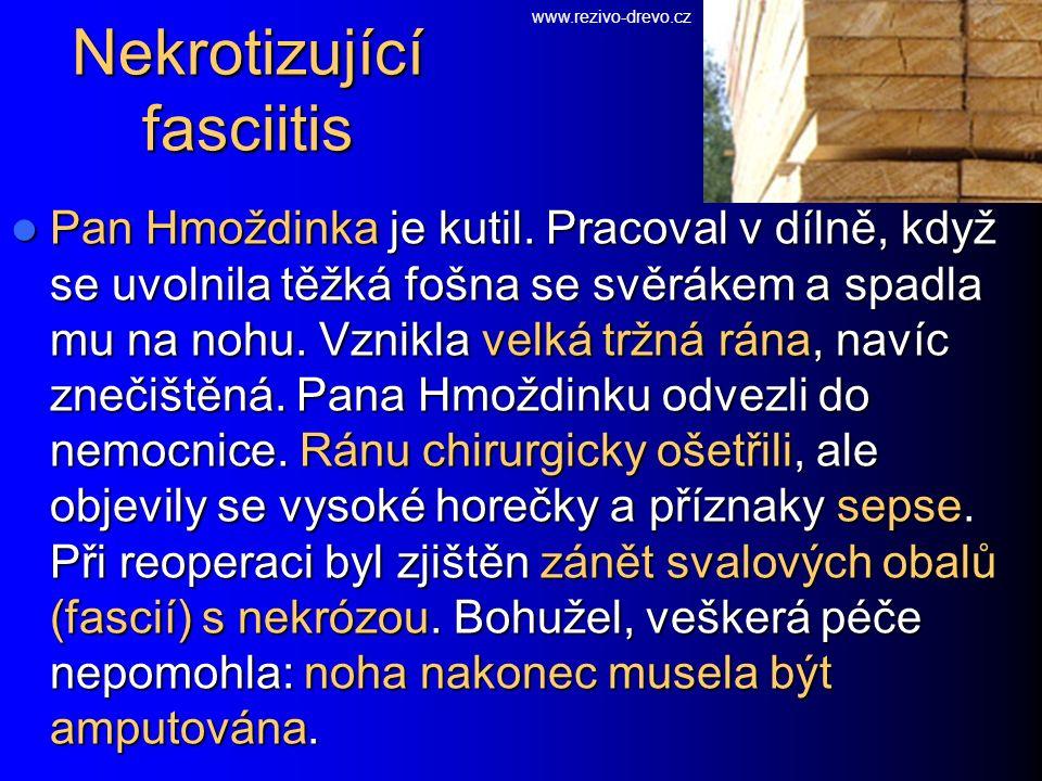 Nekrotizující fasciitis Pan Hmoždinka je kutil.
