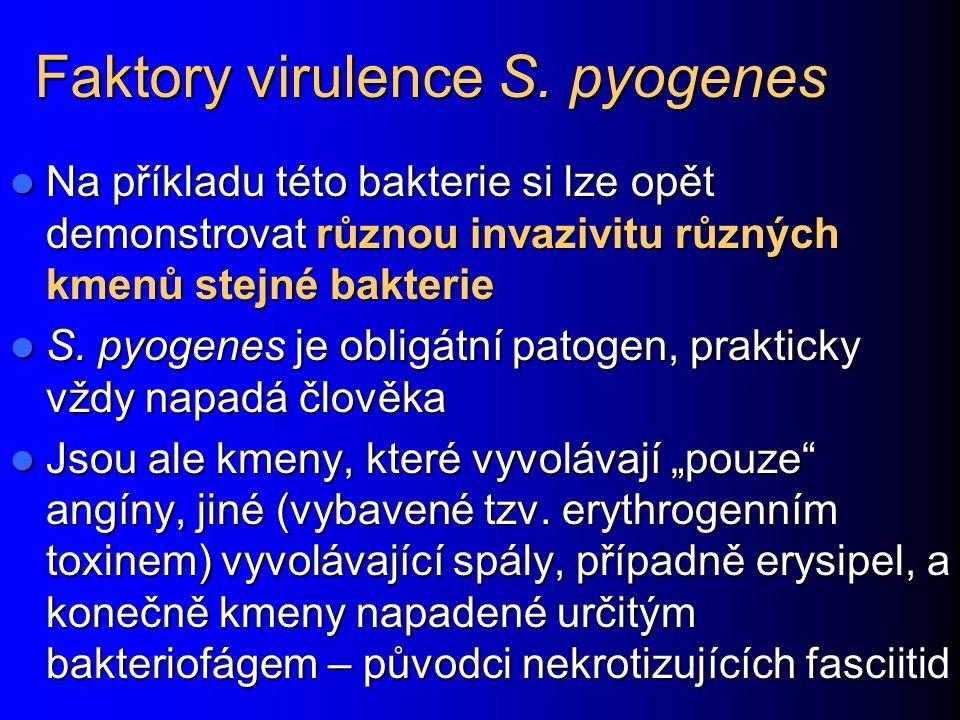 Faktory virulence S.
