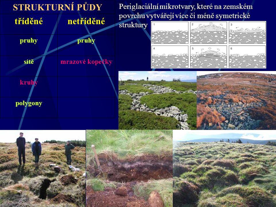 STRUKTURNÍ PŮDY tříděnénetříděné pruhy sítěmrazové kopečky kruhy polygony Periglaciální mikrotvary, které na zemském povrchu vytvářejí více či méně sy