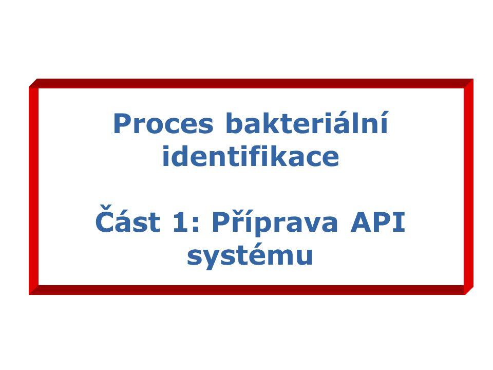 Proces bakteriální identifikace Část 1: Příprava API systému