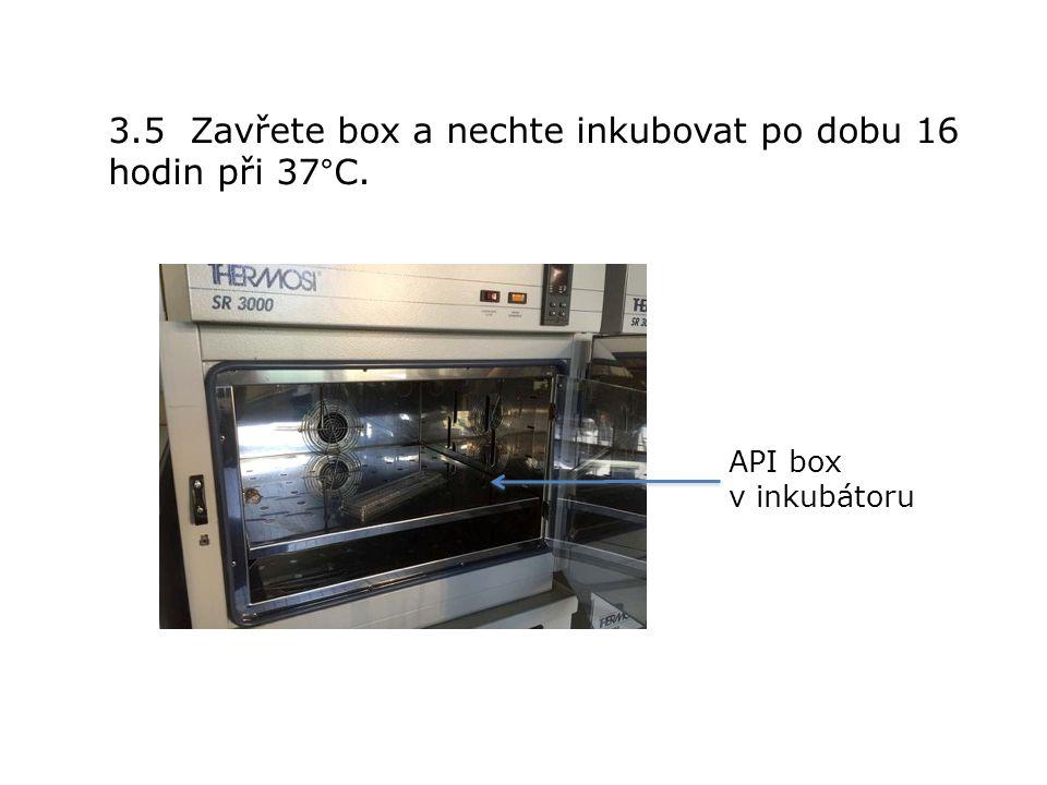 3.5 Zavřete box a nechte inkubovat po dobu 16 hodin při 37°C. API box v inkubátoru