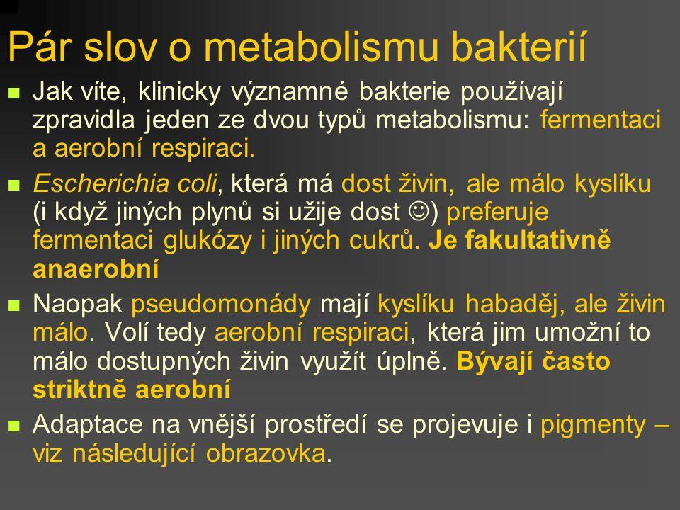 Pár slov o metabolismu bakterií Jak víte, klinicky významné bakterie používají zpravidla jeden ze dvou typů metabolismu: fermentaci a aerobní respiraci.