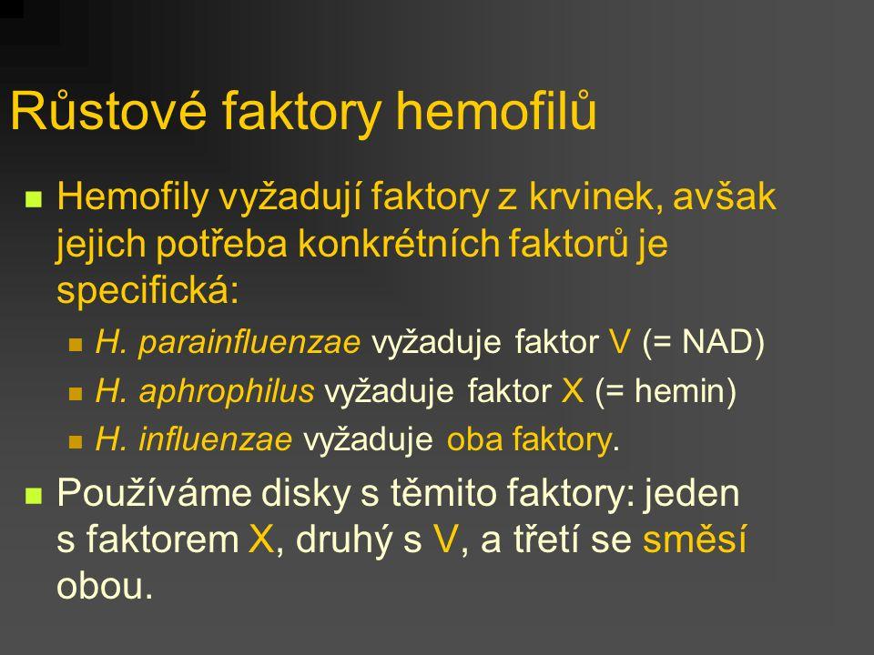 Růstové faktory hemofilů Hemofily vyžadují faktory z krvinek, avšak jejich potřeba konkrétních faktorů je specifická: H. parainfluenzae vyžaduje fakto