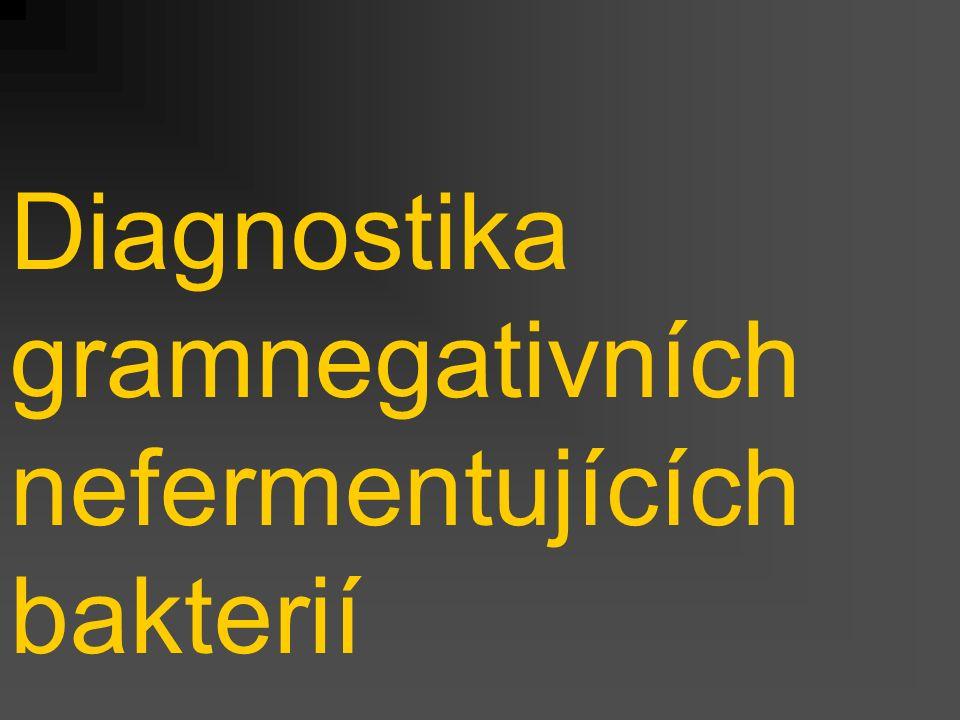 Diagnostika gramnegativních nefermentujících bakterií