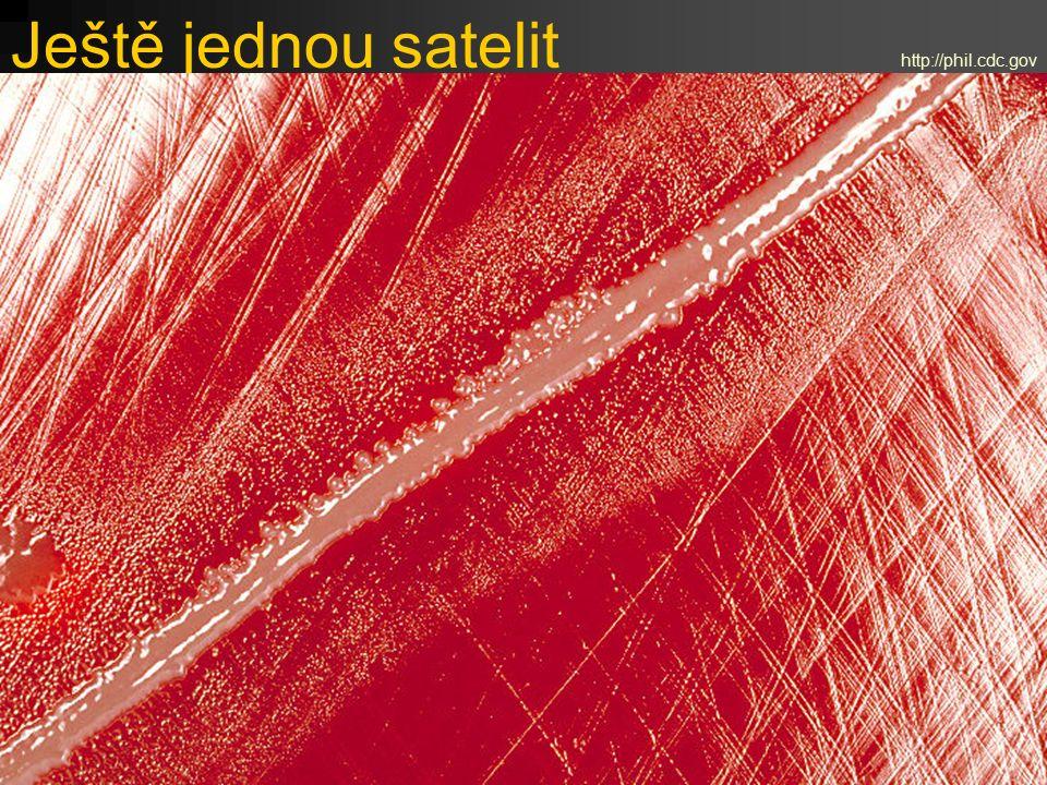 Ještě jednou satelit http://phil.cdc.gov