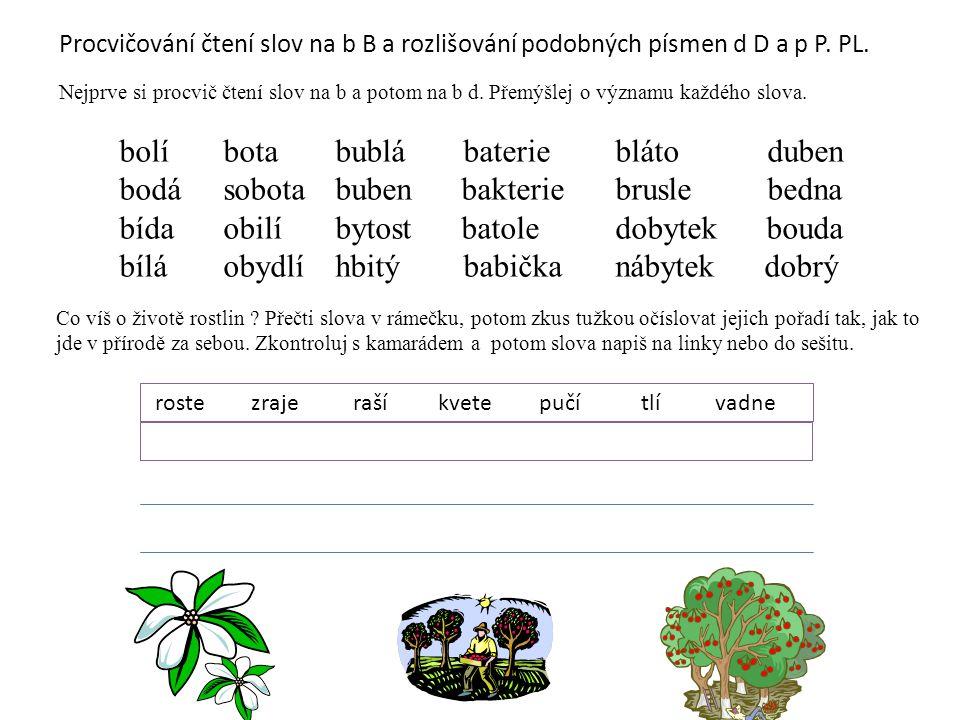 Procvičování čtení slov na b B a rozlišování podobných písmen d D a p P. PL. Nejprve si procvič čtení slov na b a potom na b d. Přemýšlej o významu ka