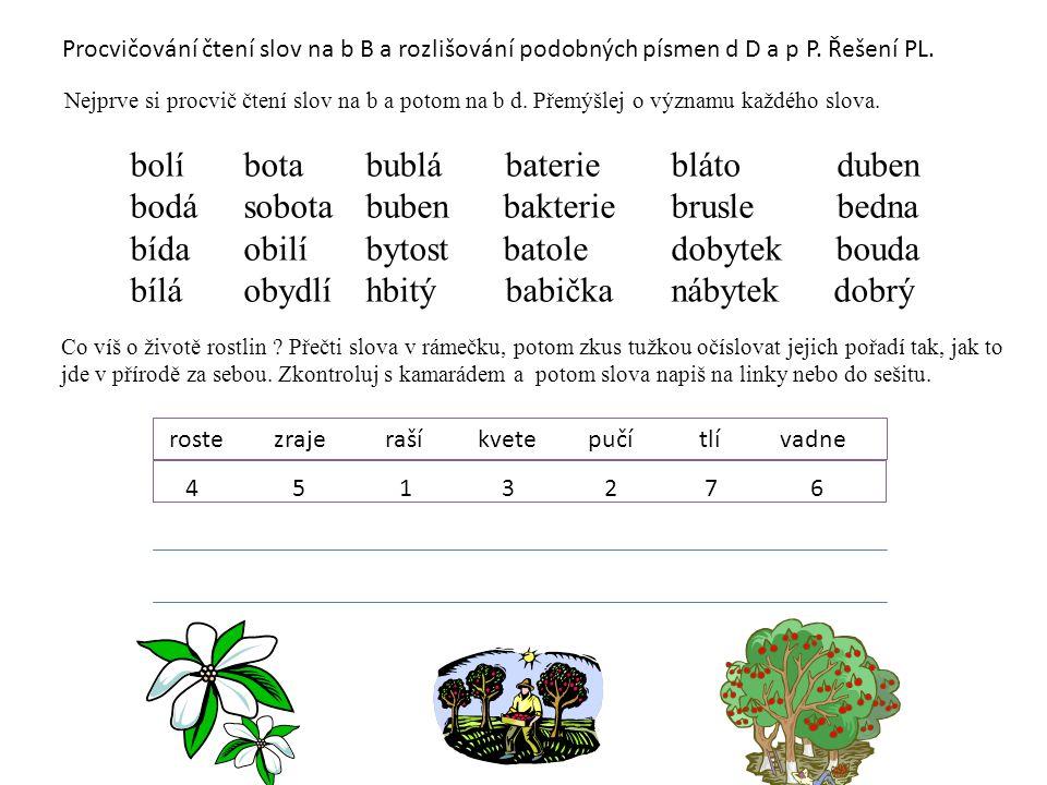 Procvičování čtení slov na b B a rozlišování podobných písmen d D a p P. Řešení PL. Nejprve si procvič čtení slov na b a potom na b d. Přemýšlej o výz