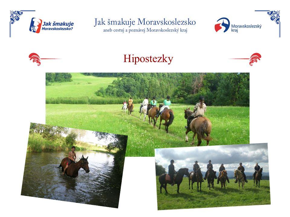 Hipostezky
