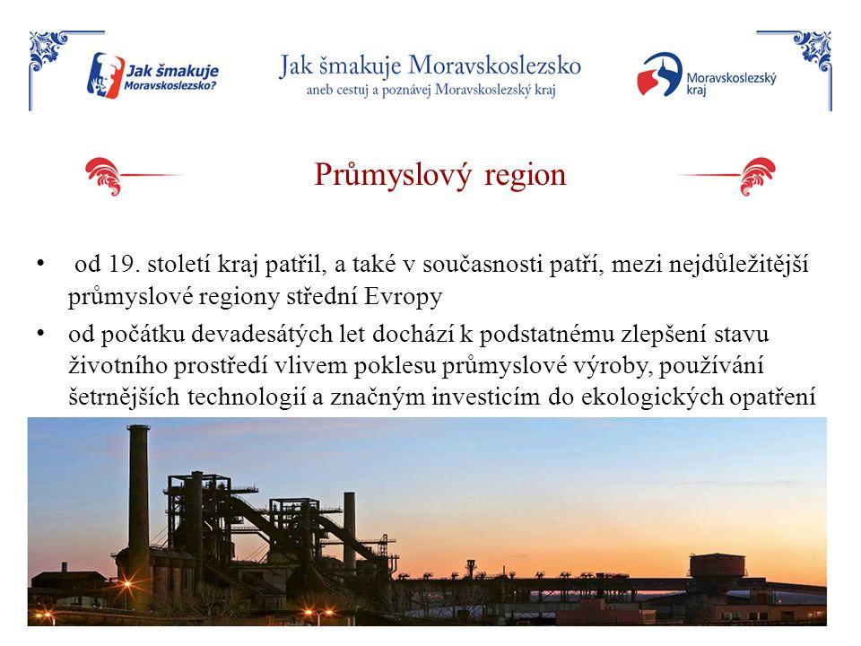 Průmyslový region od 19. století kraj patřil, a také v současnosti patří, mezi nejdůležitější průmyslové regiony střední Evropy od počátku devadesátýc