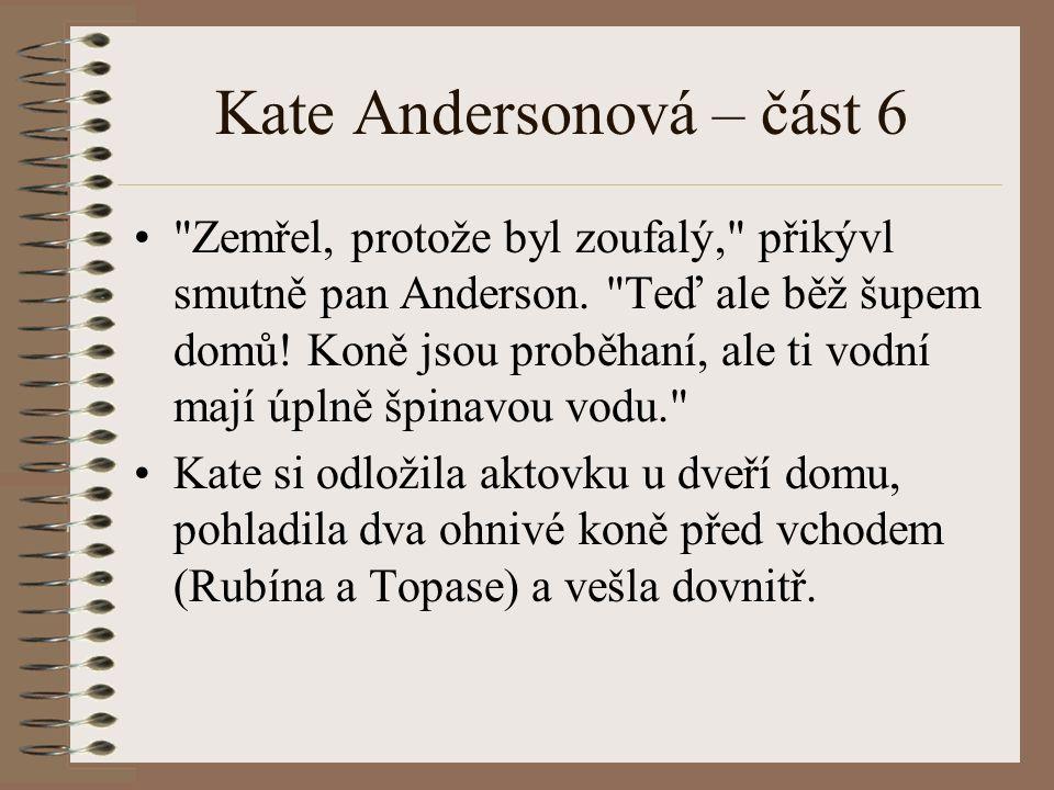 Kate Andersonová – část 6 Zemřel, protože byl zoufalý, přikývl smutně pan Anderson.