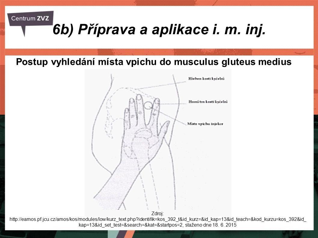 6b) Příprava a aplikace i. m. inj. Postup vyhledání místa vpichu do musculus gluteus medius Zdroj: http://eamos.pf.jcu.cz/amos/kos/modules/low/kurz_te