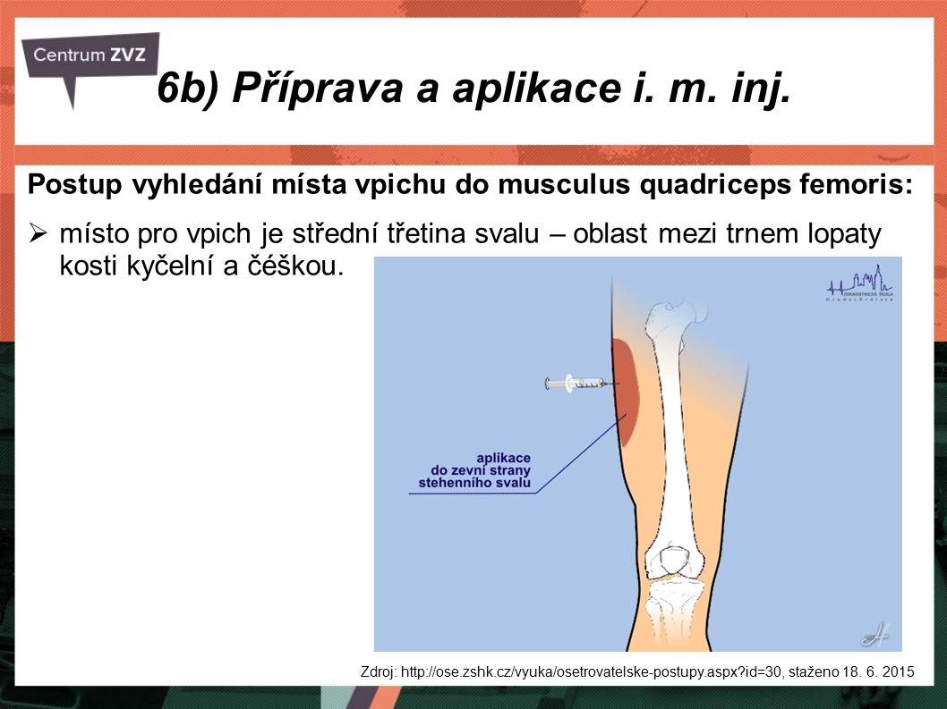 6b) Příprava a aplikace i. m. inj. Postup vyhledání místa vpichu do musculus quadriceps femoris:  místo pro vpich je střední třetina svalu – oblast m