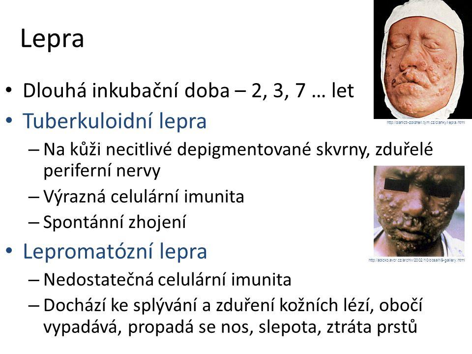 Lepra Dlouhá inkubační doba – 2, 3, 7 … let Tuberkuloidní lepra – Na kůži necitlivé depigmentované skvrny, zduřelé periferní nervy – Výrazná celulární imunita – Spontánní zhojení Lepromatózní lepra – Nedostatečná celulární imunita – Dochází ke splývání a zduření kožních lézí, obočí vypadává, propadá se nos, slepota, ztráta prstů http://abicko.avcr.cz/archiv/2002/10/obsah/9-gallery.html http://blanicti-zoldneri.tym.cz/clanky/lepra.html