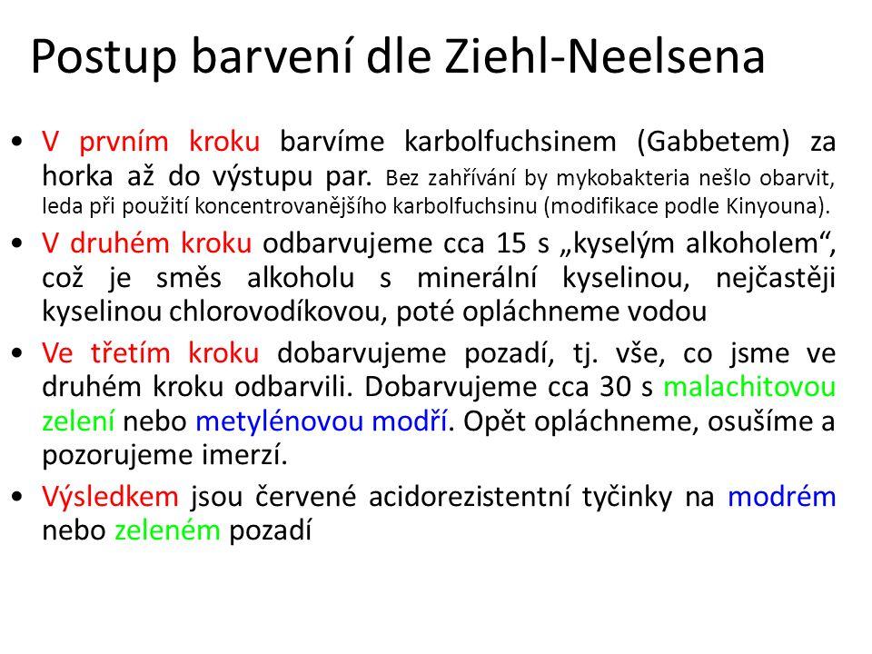 Postup barvení dle Ziehl-Neelsena V prvním kroku barvíme karbolfuchsinem (Gabbetem) za horka až do výstupu par.