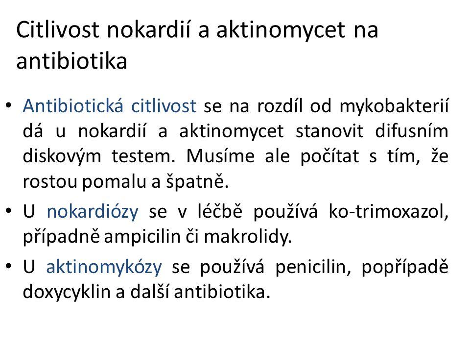 Citlivost nokardií a aktinomycet na antibiotika Antibiotická citlivost se na rozdíl od mykobakterií dá u nokardií a aktinomycet stanovit difusním disk