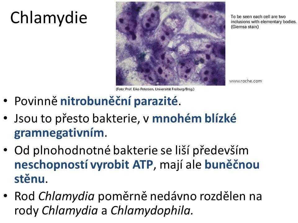 Chlamydie Povinně nitrobuněční parazité.Jsou to přesto bakterie, v mnohém blízké gramnegativním.