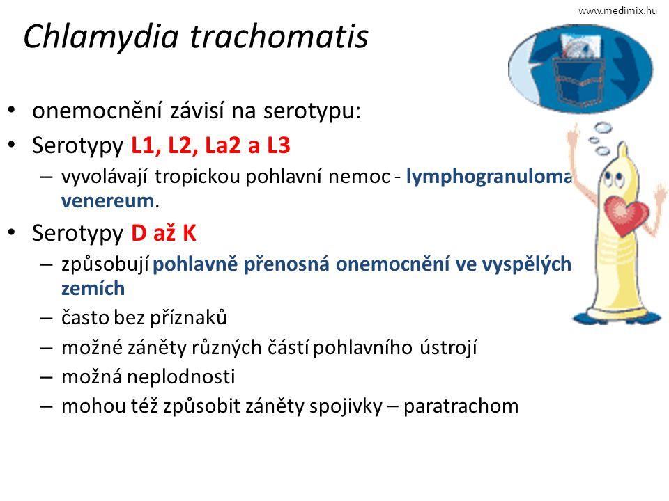 Chlamydia trachomatis onemocnění závisí na serotypu: Serotypy L1, L2, La2 a L3 – vyvolávají tropickou pohlavní nemoc - lymphogranuloma venereum.