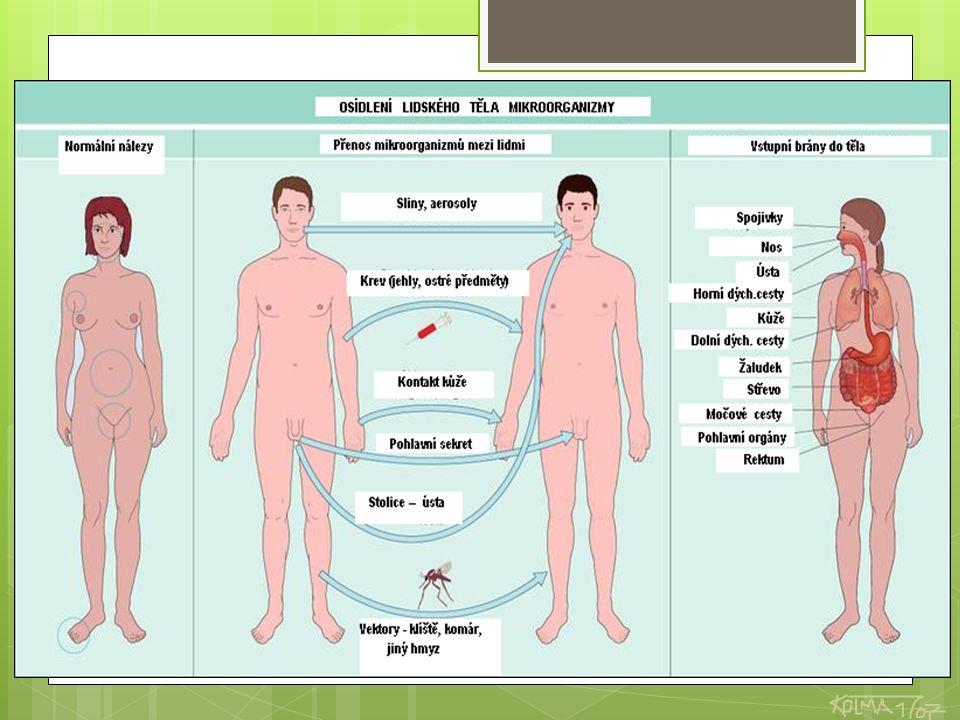 PROCES ŠÍŘENÍ NÁKAZY V NEMOCNIČNÍM PROSTŘEDÍ ZDROJ NÁKAZY PŘENOS VNÍMAVÝ JEDINEC pacient zdravotník pacient