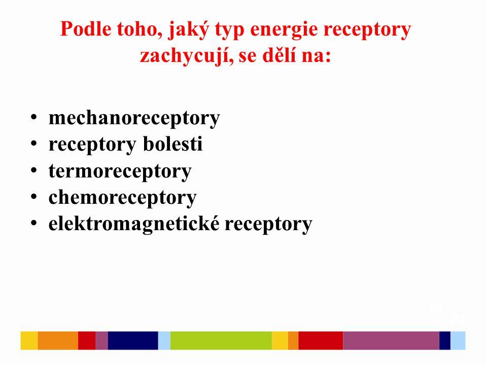 Podle toho, jaký typ energie receptory zachycují, se dělí na: [8] mechanoreceptory receptory bolesti termoreceptory chemoreceptory elektromagnetické r
