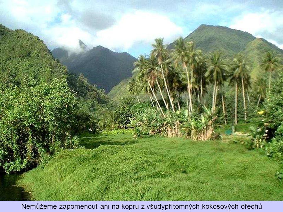 Těží se zde fosfát, pěstuje vanilka, tropické květiny a ananas, grepy a mango