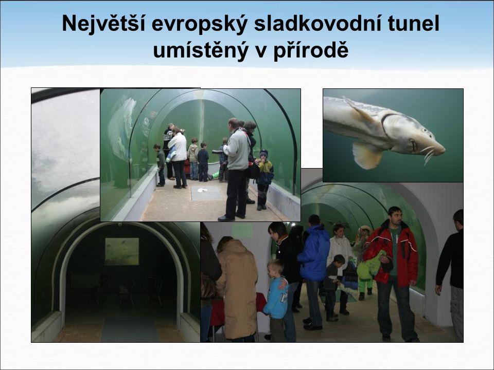 Největší evropský sladkovodní tunel umístěný v přírodě