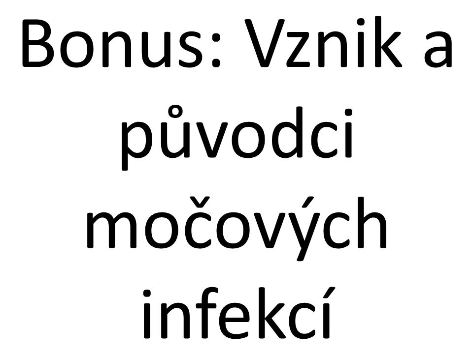 Bonus: Vznik a původci močových infekcí