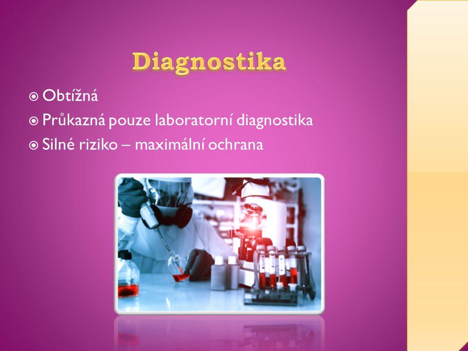  Obtížná  Průkazná pouze laboratorní diagnostika  Silné riziko – maximální ochrana