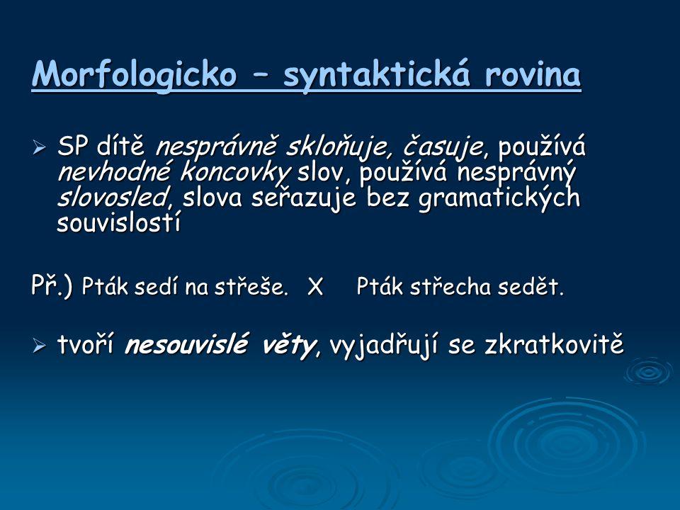 Morfologicko – syntaktická rovina  SP dítě nesprávně skloňuje, časuje, používá nevhodné koncovky slov, používá nesprávný slovosled, slova seřazuje be