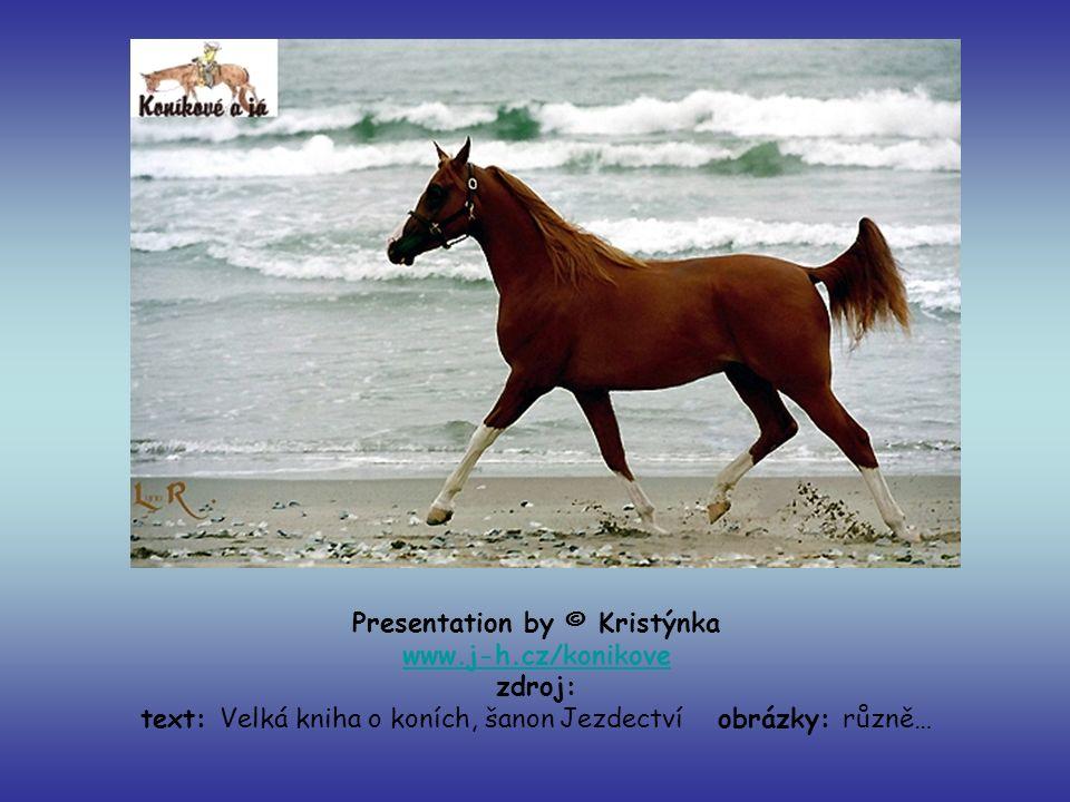 Presentation by © Kristýnka www.j-h.cz/konikove zdroj: text: Velká kniha o koních, šanon Jezdectví obrázky: různě… www.j-h.cz/konikove