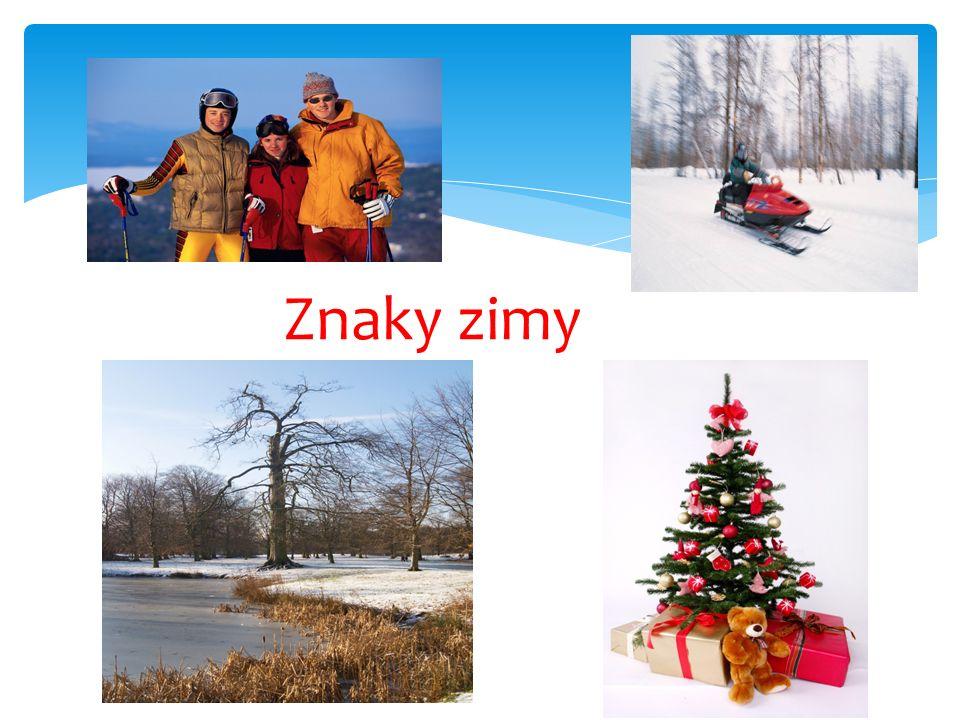  Zima začíná 21.prosince – den zimního slunovratu; zimními měsíci jsou prosinec, leden, únor.
