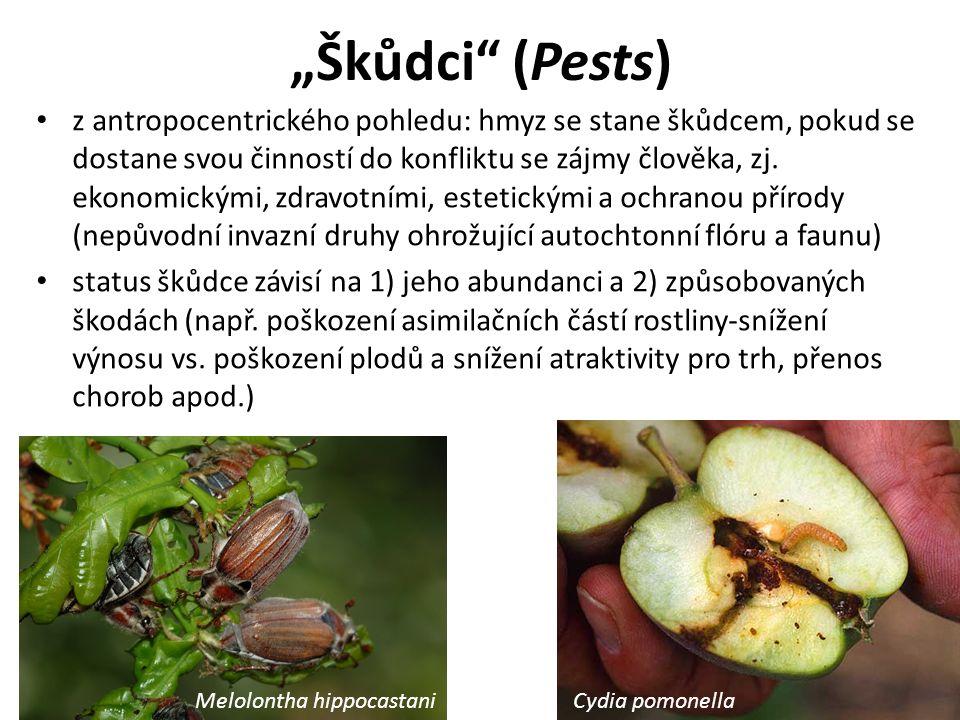 """""""Škůdci (Pests) z antropocentrického pohledu: hmyz se stane škůdcem, pokud se dostane svou činností do konfliktu se zájmy člověka, zj."""