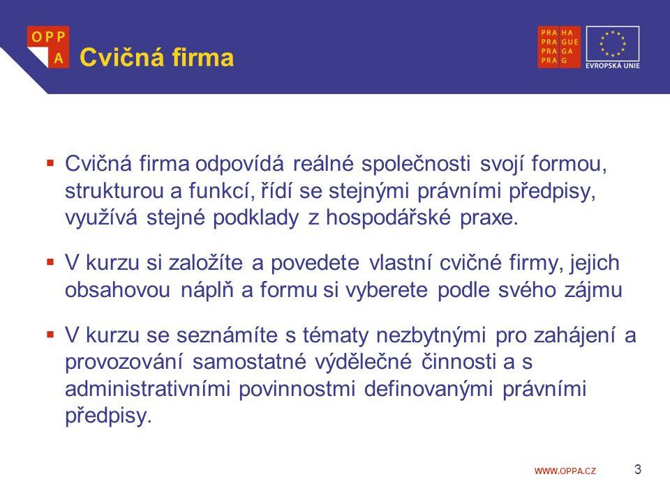 WWW.OPPA.CZ Příklady úspěšných českých podnikatelek  Linda Vavříková, česká podnikatelka mladé generace, vyhrála v roce 2006 prestižní ocenění Živnostník roku.