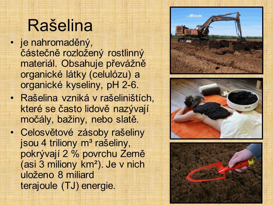 Rašelina je nahromaděný, částečně rozložený rostlinný materiál.