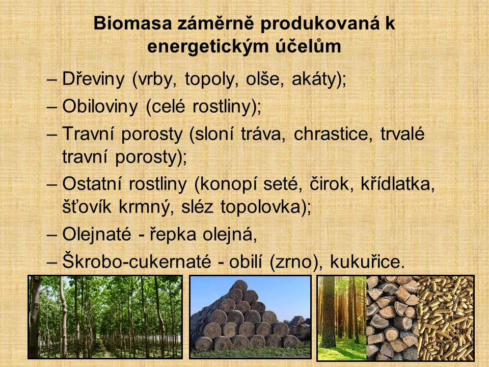 Biomasa záměrně produkovaná k energetickým účelům –Dřeviny (vrby, topoly, olše, akáty); –Obiloviny (celé rostliny); –Travní porosty (sloní tráva, chrastice, trvalé travní porosty); –Ostatní rostliny (konopí seté, čirok, křídlatka, šťovík krmný, sléz topolovka); –Olejnaté - řepka olejná, –Škrobo-cukernaté - obilí (zrno), kukuřice.