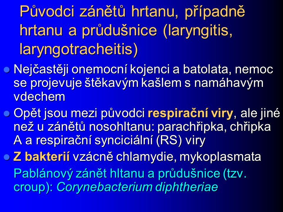 Původci zánětů hrtanu, případně hrtanu a průdušnice (laryngitis, laryngotracheitis) Nejčastěji onemocní kojenci a batolata, nemoc se projevuje štěkavý