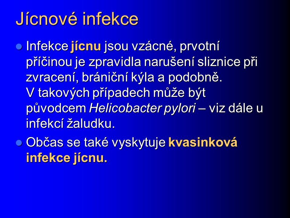 Jícnové infekce Infekce jícnu jsou vzácné, prvotní příčinou je zpravidla narušení sliznice při zvracení, brániční kýla a podobně. V takových případech