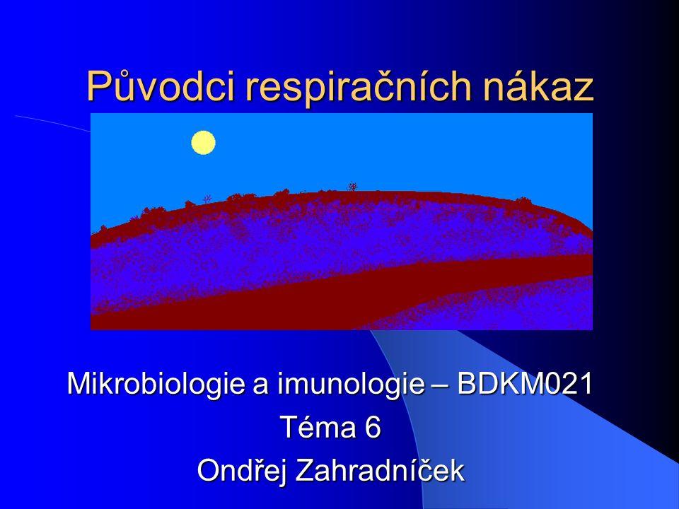 Původci respiračních nákaz Mikrobiologie a imunologie – BDKM021 Téma 6 Ondřej Zahradníček