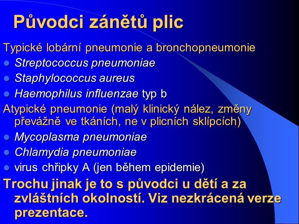 Původci zánětů plic Typické lobární pneumonie a bronchopneumonie Streptococcus pneumoniae Streptococcus pneumoniae Staphylococcus aureus Staphylococcu