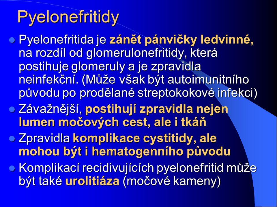 Pyelonefritidy Pyelonefritida je zánět pánvičky ledvinné, na rozdíl od glomerulonefritidy, která postihuje glomeruly a je zpravidla neinfekční. (Může